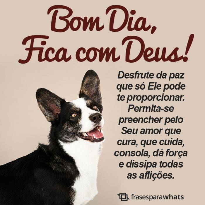 Bom Dia, Fica na Paz de Deus