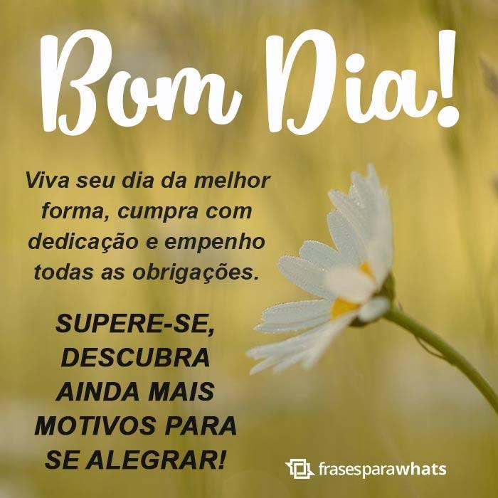 Bom Dia, Viva e Supere