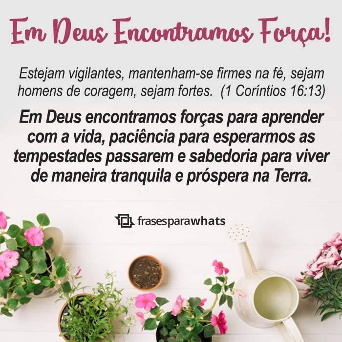 Em Deus Encontramos Força