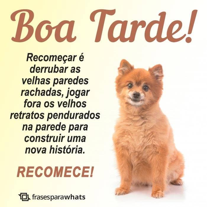 Boa Tarde, Recomece