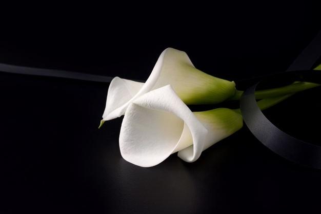 Luto, tio: Expresse a Saudade eterna pelo Tio que Faleceu