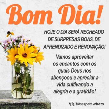 Bom Dia com Surpresas Boas