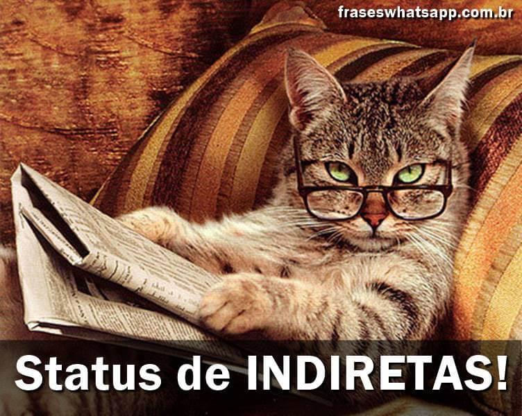 Indiretas – 200 Status Mais Usados!