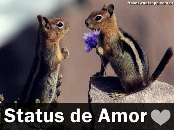 +75 Status de Amor!