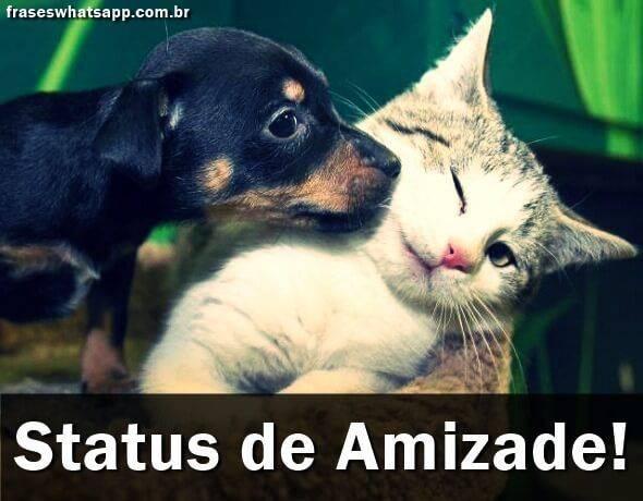 Status De Amizade Frases Para Whatsapp