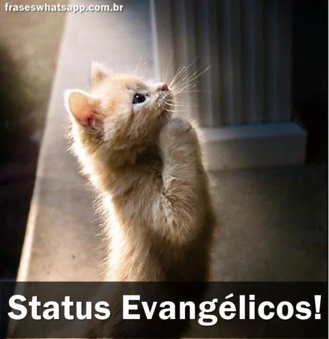 +60 Status Evangélicos!