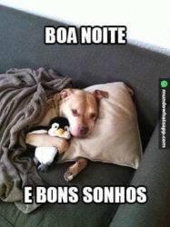 Bons sonhos Boa noite