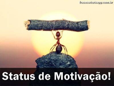 Frases de Motivação para Status 6