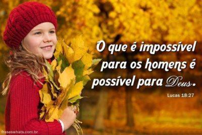 Deus do Impossível! 12