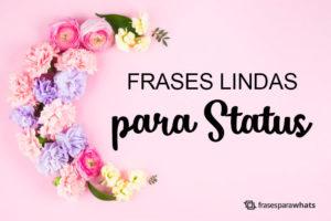 Frases Bonitas para Status 5