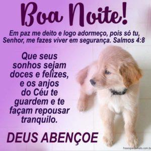 Boa Noite, Ouça Deus 6