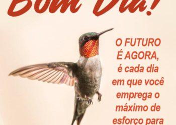 Bom Dia O Futuro é Agora
