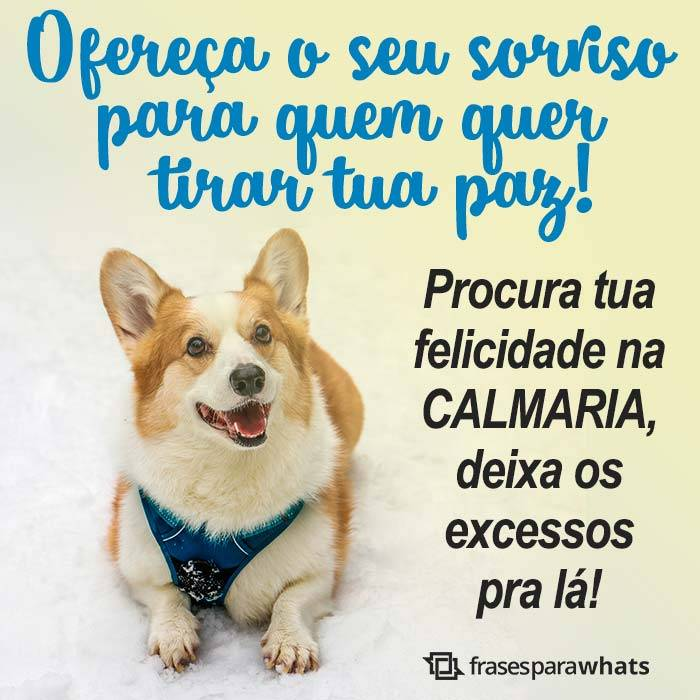 Felicidade é Calmaria