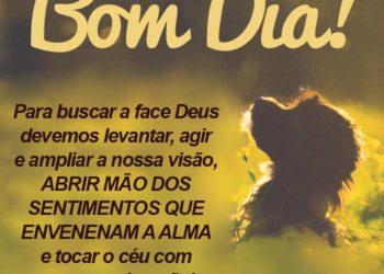 Bom Dia, Busque a Deus!