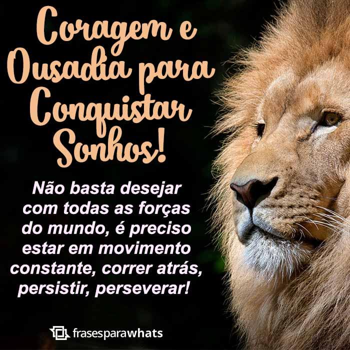 Coragem para Conquistar seus Sonhos 1