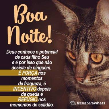 Boa Noite, Deus Conhece o seu Potencial 5