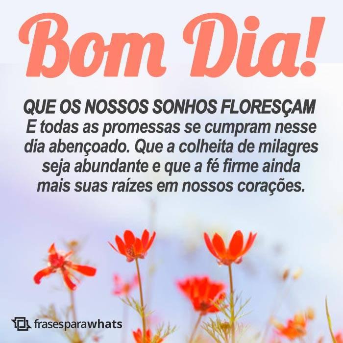 Bom Dia com Sonhos Florescendo 6