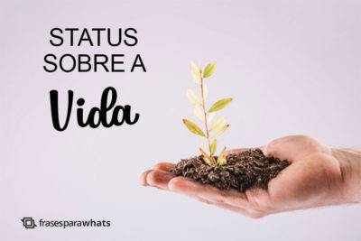 Status Sobre a Vida 6