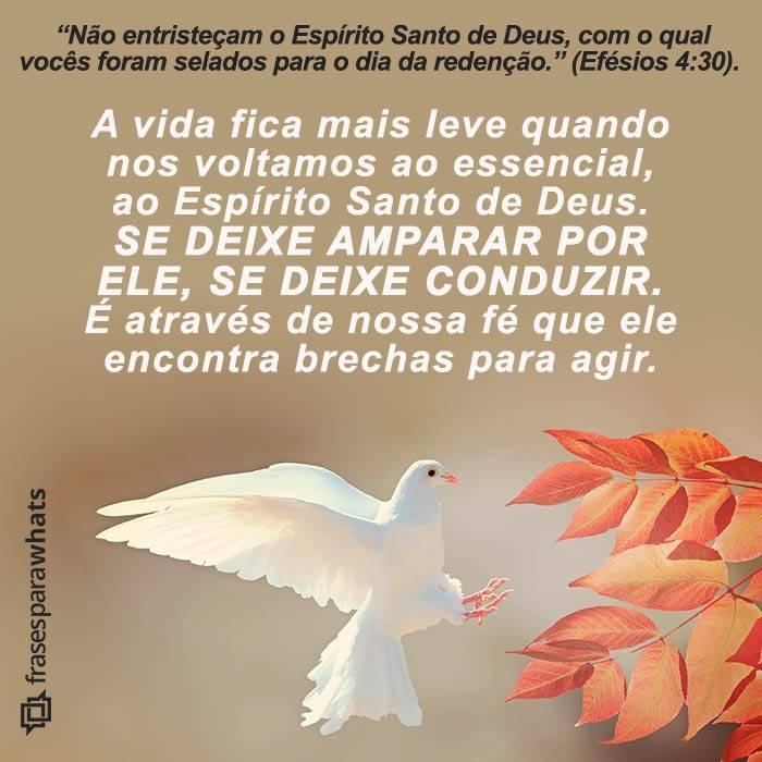 Volte-se para o Espírito Santo de Deus 7