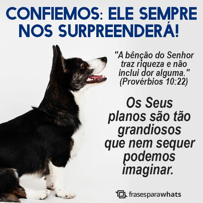 As Bênçãos de Deus nos Surpreenderão 5