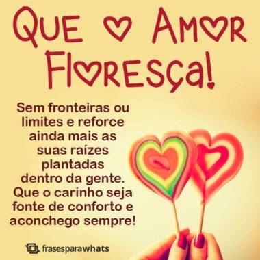 Que o Amor Floresça 3
