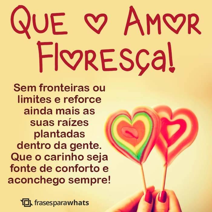 Que o Amor Floresça 6